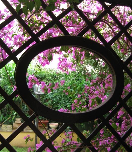 Roma garden