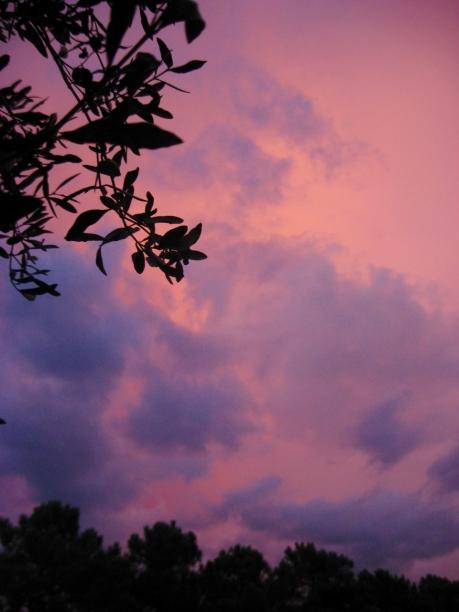 Capalbio sunset