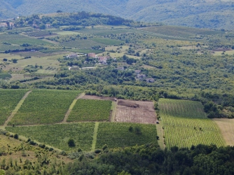 Tuscanicious.