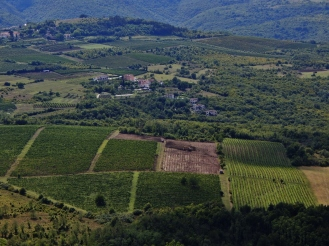 View from Motovun, Croatia