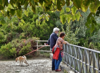 Listening in to Etruscan ancestors in Vulci.