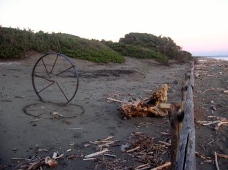 The wheel was invented on this beach.