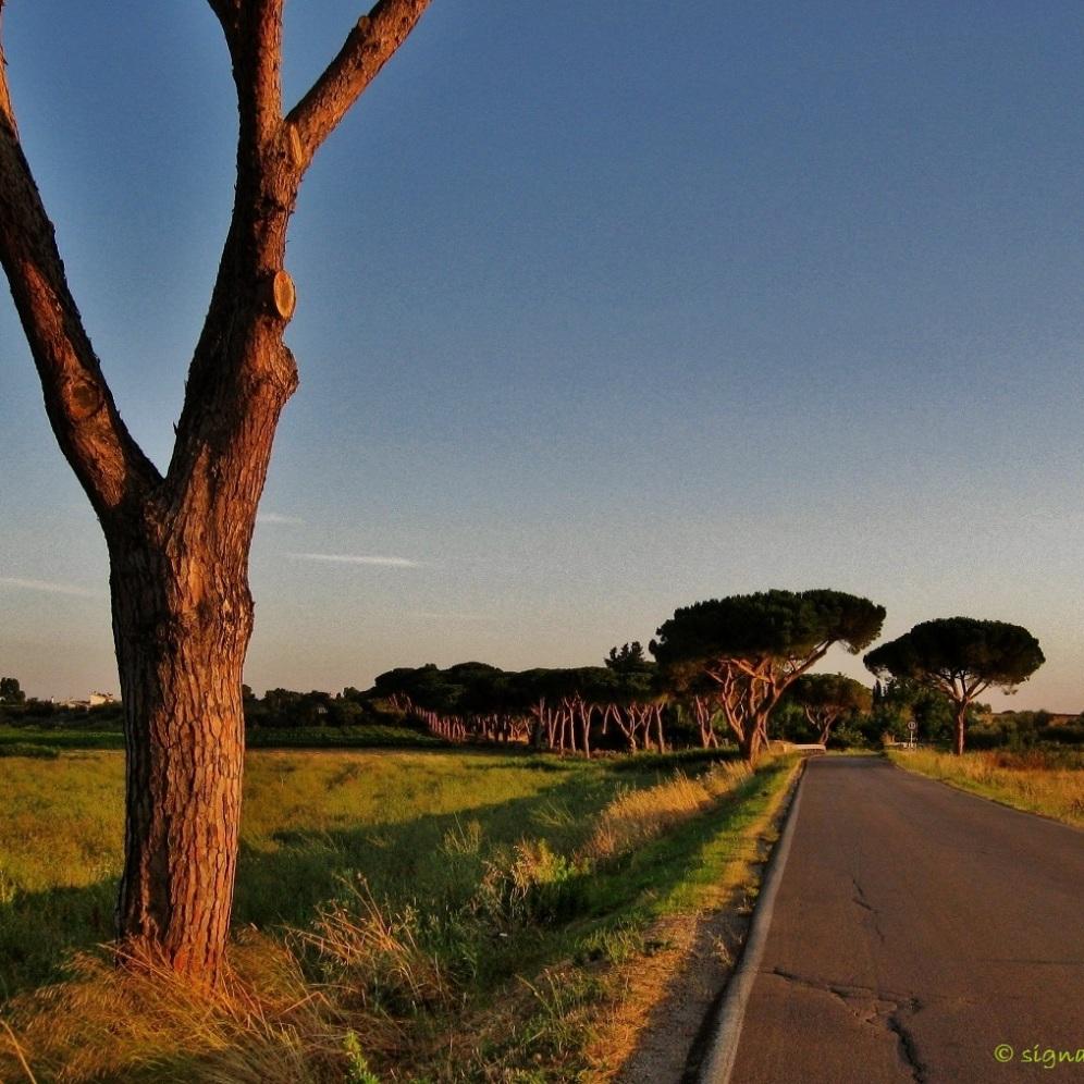 Borgo Carige