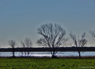 Lake Burano